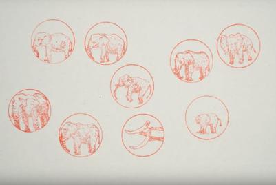 「印鑑」で殺される象を救え