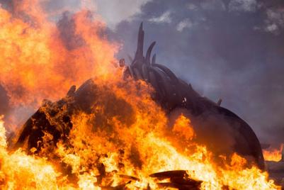 バルサの新スポンサー・楽天に影を落とす、象牙・鯨肉販売