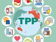 Trans-Pacific Partnership keeps CFOs waiting