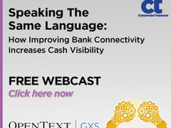 Speaking The Same Language: How Improving Bank Connectivity Increases Cash Visibility