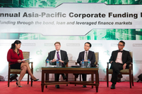 Panel: The shape of the loan market