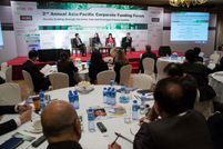 Panel: Financing through the bond markets