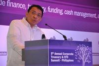 Diwa Guinigundo, Deputy Governor for Monetary Stability, Bangko Sentral ng Pilipinas