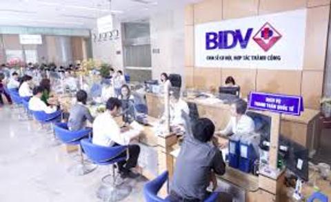 Vietnam's banks: credit not capital