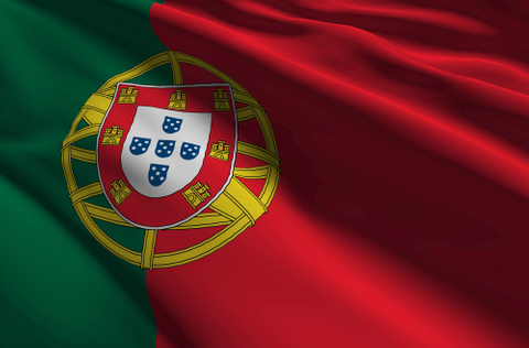 Fosun snaps up Portugal insurance assets