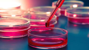 Wuxi AppTec joins biologics IPO rush