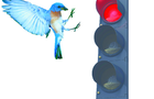 BlueBird IPO has meter problems