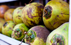 United Coconut Planters attract local banks