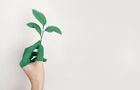 Singapore ESG financing: dirty hands make green work?