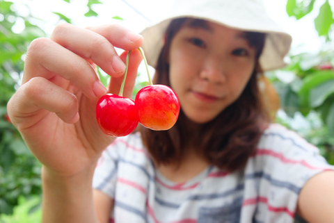 Cherry-picking Japanese private equity funds